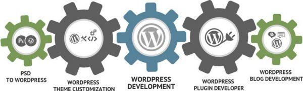 Wordpress Development Company in Ahmedabad India